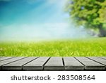 summer picnic on nature  side...   Shutterstock . vector #283508564