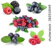 fruit  berry fruit  freshness. | Shutterstock . vector #283510049