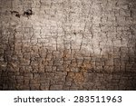 texture old wood background. | Shutterstock . vector #283511963