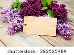 Lilac Flowers With Empty Tag On ...