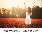 Young Girl On Poppy Field Hand...