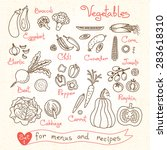 set drawings of vegetables for...   Shutterstock .eps vector #283618310