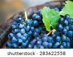 grape on a wooden barrel. macro ... | Shutterstock . vector #283622558