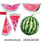 watercolor vector illustration... | Shutterstock .eps vector #283626428
