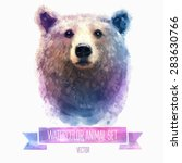 Vector set of animals. Bear hand painted watercolor illustration isolated on white background - stock vector