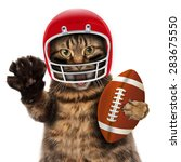 Stock photo funny cat playing american football 283675550