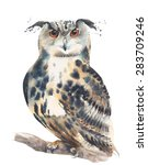 Stock photo owl watercolor painting illustration isolated on white background 283709246