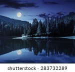 Lake Near The Pine Forest In...