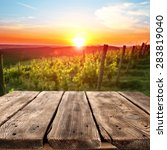 vineyard at sunset in the... | Shutterstock . vector #283819040