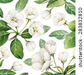 seamless pattern with... | Shutterstock . vector #283832810