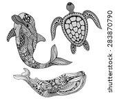 zentangle stylized set sea... | Shutterstock .eps vector #283870790