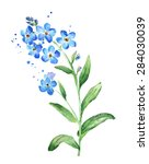 forget me not flower  watercolor | Shutterstock . vector #284030039