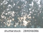 sunset in forest   abstract... | Shutterstock . vector #284046086