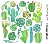 watercolor cactus and succulent ... | Shutterstock .eps vector #284170670
