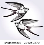 hand drawn flying swallow bird... | Shutterstock .eps vector #284252270