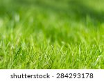Perfect Green Background By Th...