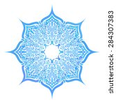 round pattern  circular...   Shutterstock .eps vector #284307383