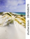 Australia Beach Sand Dunes Vie...