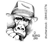 Portrait Of A Pensive Monkey...