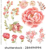 Collection Of Watercolor Flora...