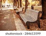 Autumnal Walkway