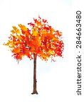 Single Autumn Tree Red And...