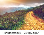 Trail Leading Through The...
