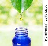 herbal essence. alternative... | Shutterstock . vector #284842100