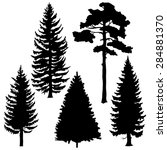 Vector Set Of Black Coniferous...