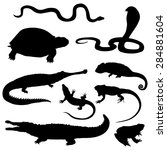 Vector Set Of Black Reptiles...