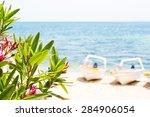 Pink Oleander Leafs  Blue Sea...