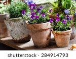 spring flowers   Shutterstock . vector #284914793