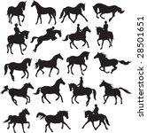 horses vector | Shutterstock .eps vector #28501651