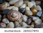 macro shot of an old  weathered ... | Shutterstock . vector #285027893