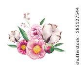 watercolor peony  cotton  wild... | Shutterstock .eps vector #285127544
