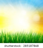 fresh spring green grass with... | Shutterstock . vector #285187868