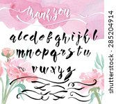 hand drawn calligraphic font... | Shutterstock .eps vector #285204914