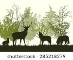wild animals in the forest... | Shutterstock .eps vector #285218279