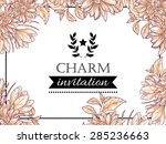 charm collection. vintage... | Shutterstock .eps vector #285236663