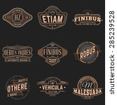 set of hipster vintage labels ... | Shutterstock .eps vector #285239528