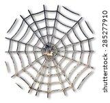 Spider Web. A Figure Looks Lik...