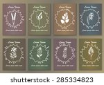 set vintage posters with hand... | Shutterstock .eps vector #285334823
