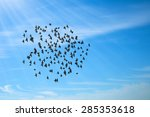 birds in blue sky | Shutterstock . vector #285353618