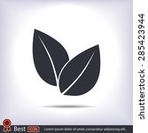 leaf icon  vector illustration. ... | Shutterstock .eps vector #285423944