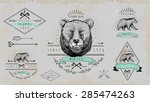 set of vintage  bear logo.... | Shutterstock .eps vector #285474263