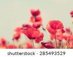 Poppy Flowers Retro Vintage...