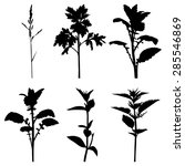 vector illustrations of set... | Shutterstock .eps vector #285546869