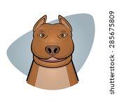 smiling pitbull illustration   Shutterstock .eps vector #285675809