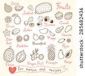 set drawings of fruit for... | Shutterstock .eps vector #285682436