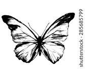 butterflies design | Shutterstock .eps vector #285685799